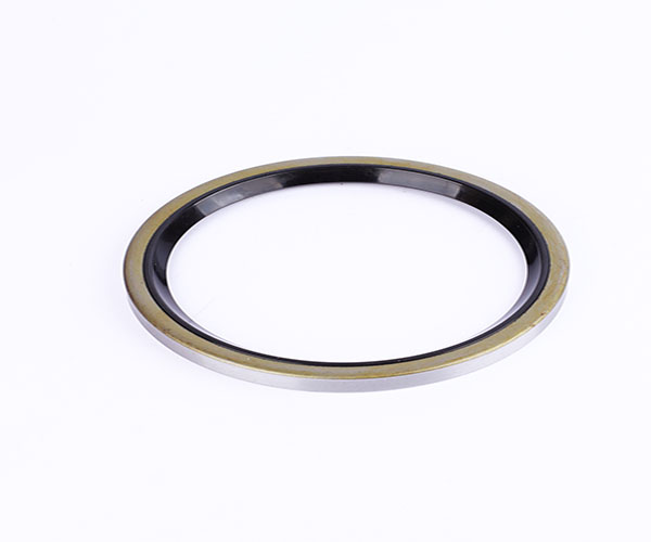 oil seal  silicone