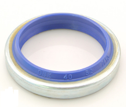 oil seal  DKB